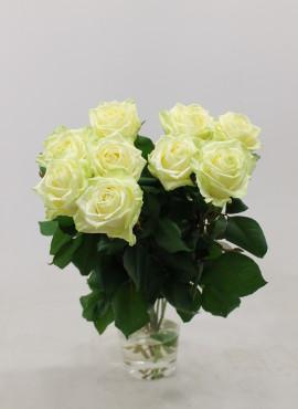 Roos White Naomi